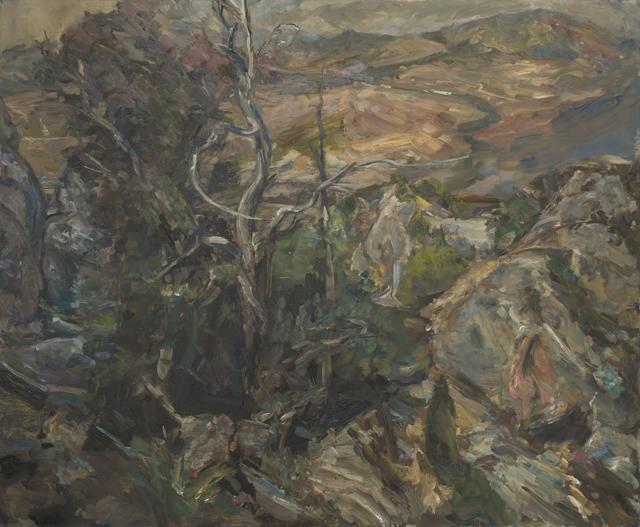 PAUL WILLIAMS  Fossil Memory  2014 oil on linen 138 ×168 cm