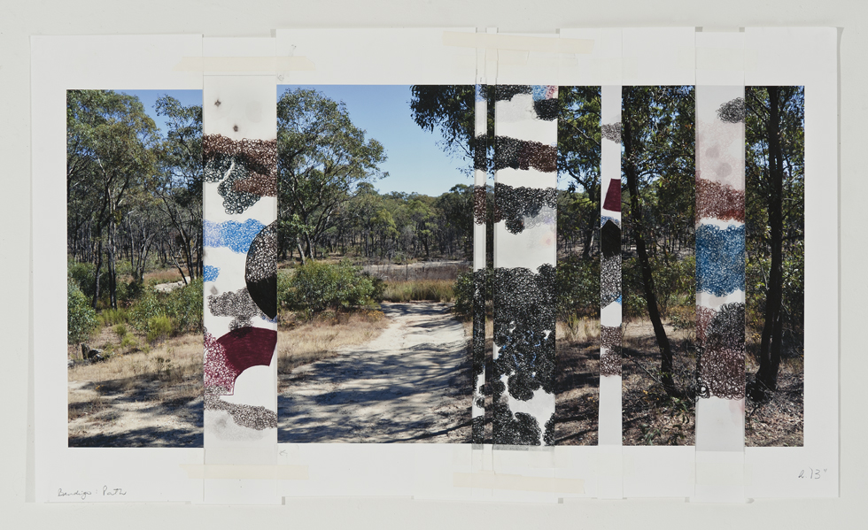 DENISE GREEN  Bendigo Path  2015 one photograph and five drawings 45 × 74 cm