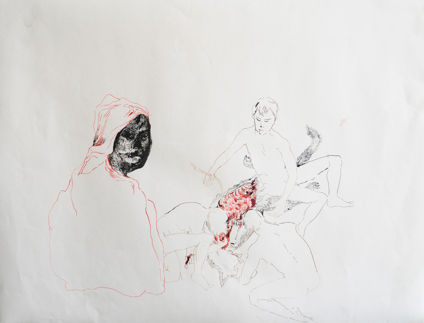 CLARE MILLEDGE  A Basic Exercise in Animality  2008 ink on paper 48 × 62.5 cm