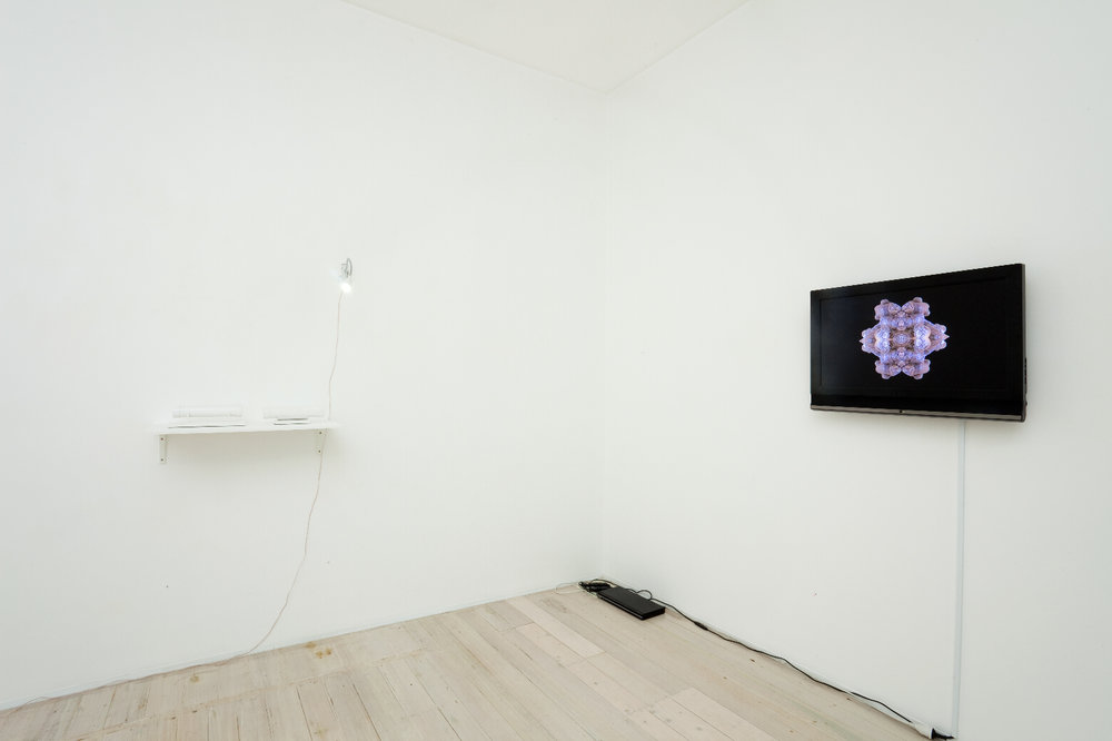 Installation view of Robin Hungerford's video