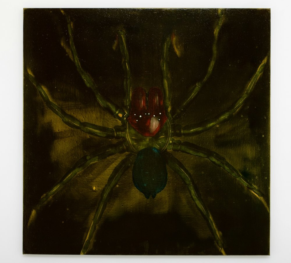 WHAT  Red Headed Mouse Spider  2010 oil on linen 122 × 122 cm