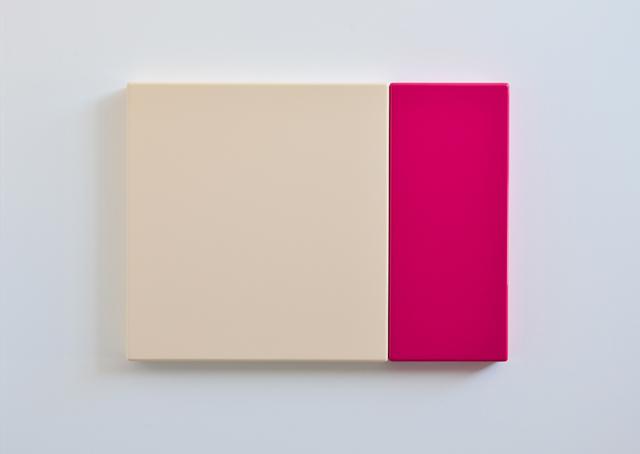 SUZIE IDIENS  Flesh Pink  2012 MDF, Polyurethane 49 ×67 ×5 cm