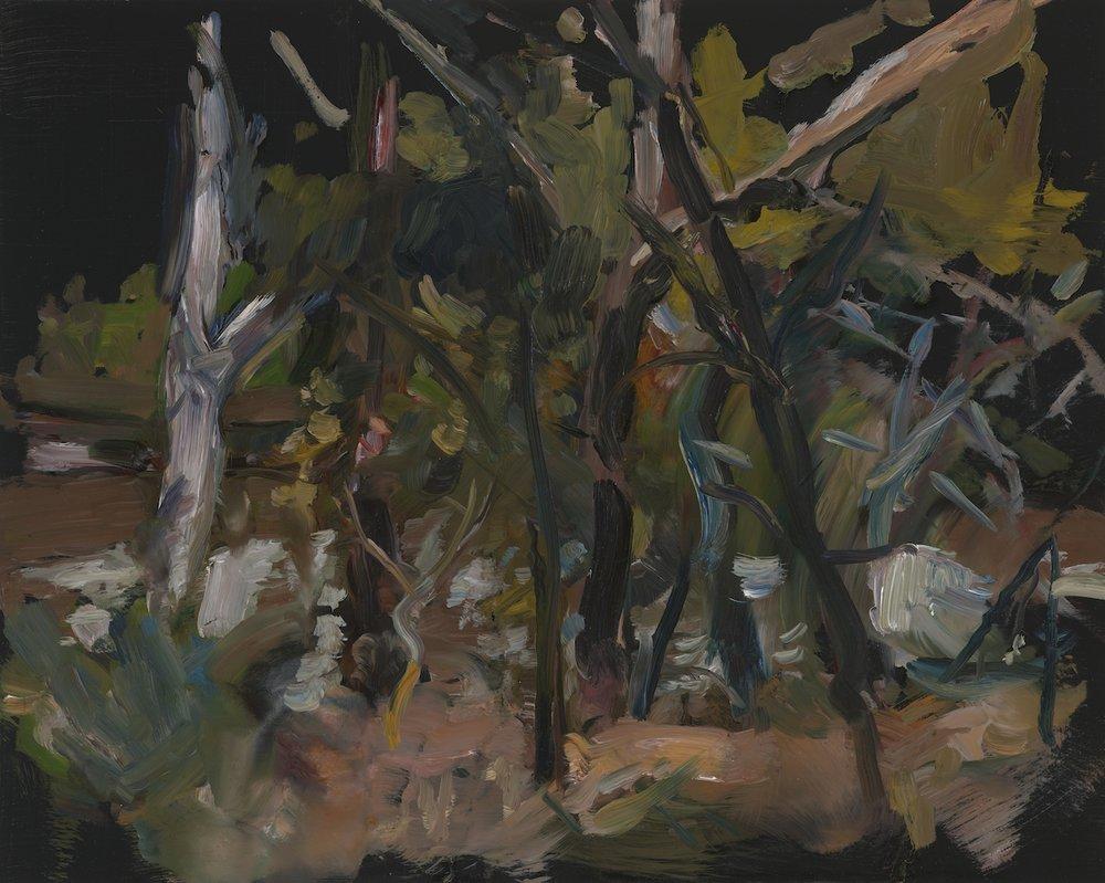 PAUL WILLIAMS  Collide  2012  oil on board 40 ×50 cm