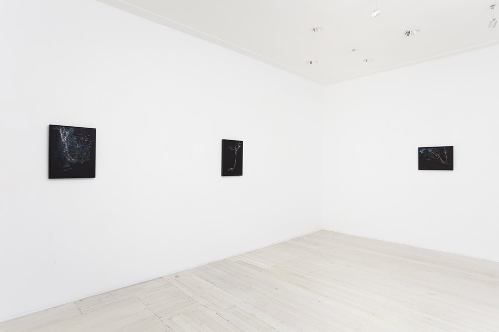 Installation view of Paul Williams's paintings
