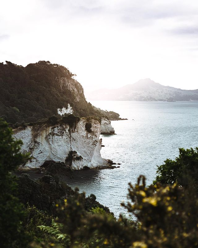 Coast vibes everywhere. Can't wait to explore the mountains on the South Island 😍