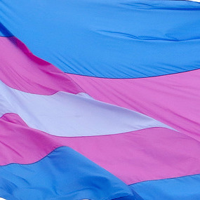 The Antonia & Andrea Belcher Trans Fund -