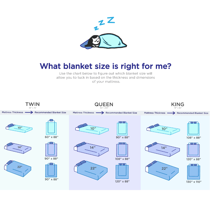 Blanket Sizing Guide Infographic