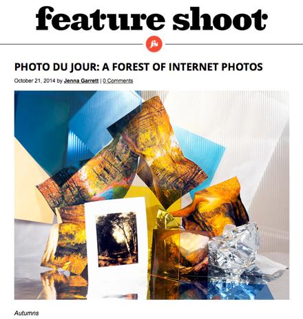 A Forest of Internet Photos.  Jenna Garrett, Feature Shoot