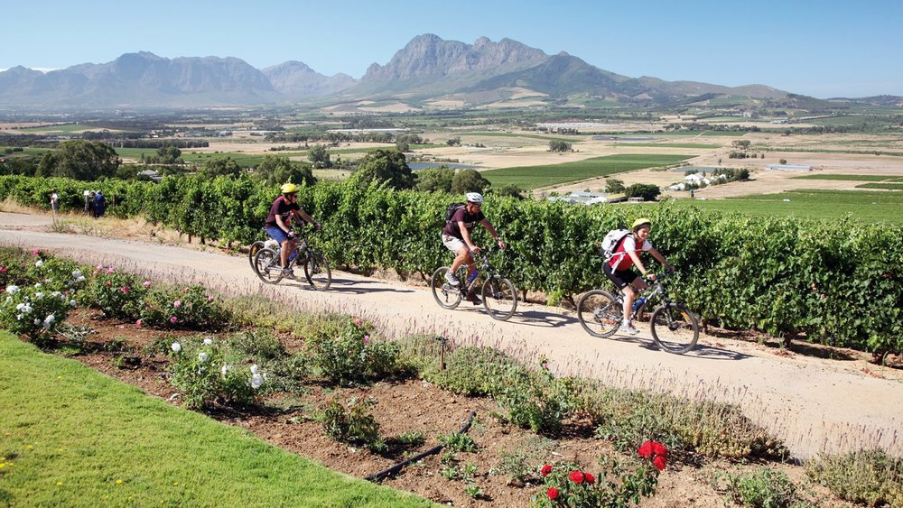 Cycle-the-Winelands-1600x900.jpg