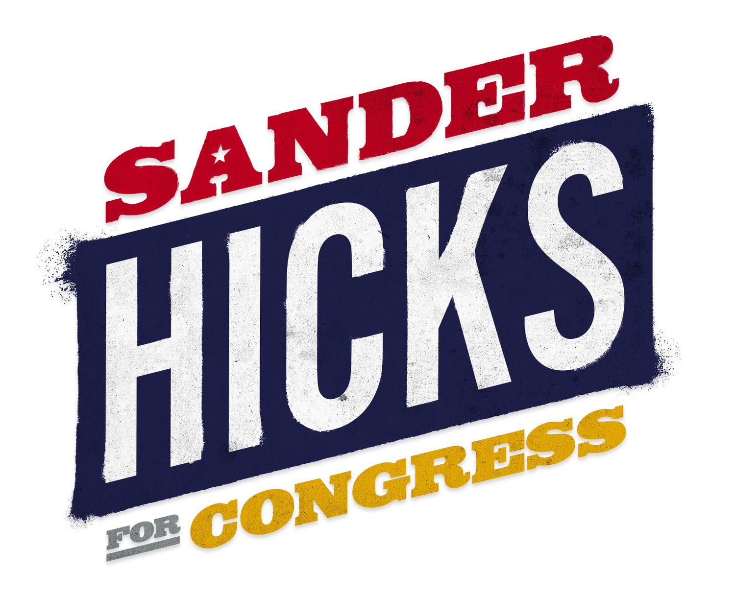 Sander Hicks for Congress
