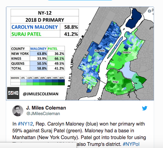Maloney Patel Demographic Breakdown.png