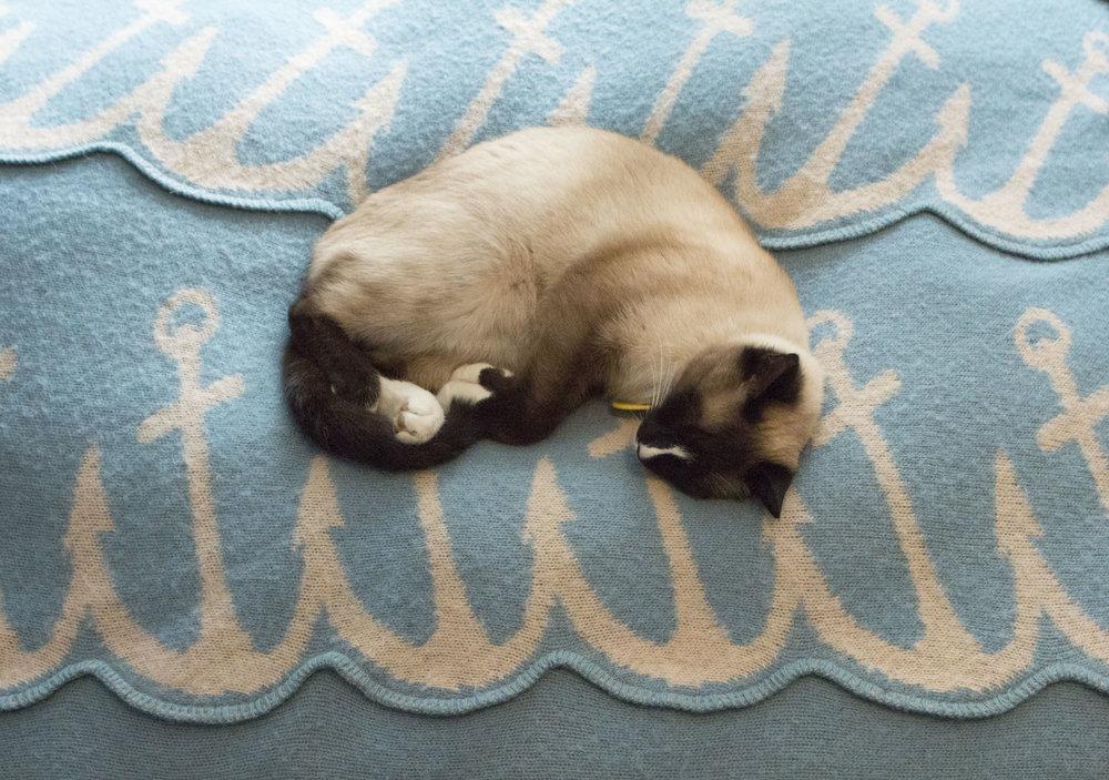 mikki-bjorg-home-mikkithecat-vikprjonsdottir-bedroom