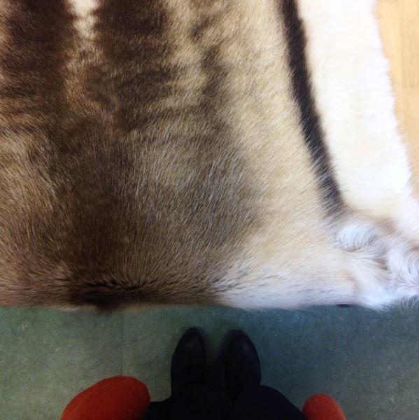 In reindeer workshop, Finland
