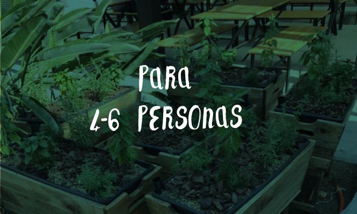 huerto3.png
