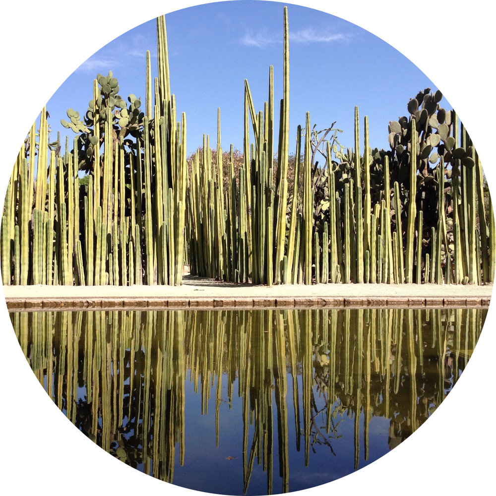 Jardín_Reservadelabiósfera_parcellla