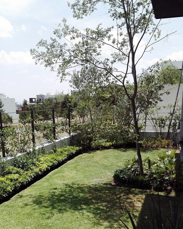 """A las emociones que evoca y a las conexiones que provoca. A eso es lo que llamamos """"Jardín"""". ✨"""