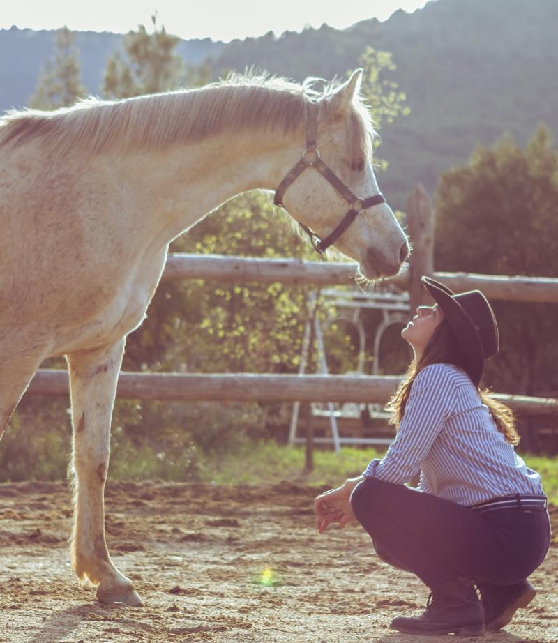 Visitas a domicilio - En el mundo equino no hay una verdad absoluta. Sí podemos poner a tu disposición nuestra experiencia y conocimiento del caballo para analizar y tratar aquellas conductas aparentemente inadaptativas y agresivas de tu caballo: mordiscos, patadas, sensibilización al jinete o a la silla, escapadas, movimientos bruscos, miedos, estrés post-traumático, trastornos alimenticios ligados a la conducta...El primer punto es descartar cualquier problema de salud con un veterinario de confianza.A partir de aquí, empezamos el proceso desde la base del respeto hacia al caballo, sin el uso de elementos de sumisión o castigo.