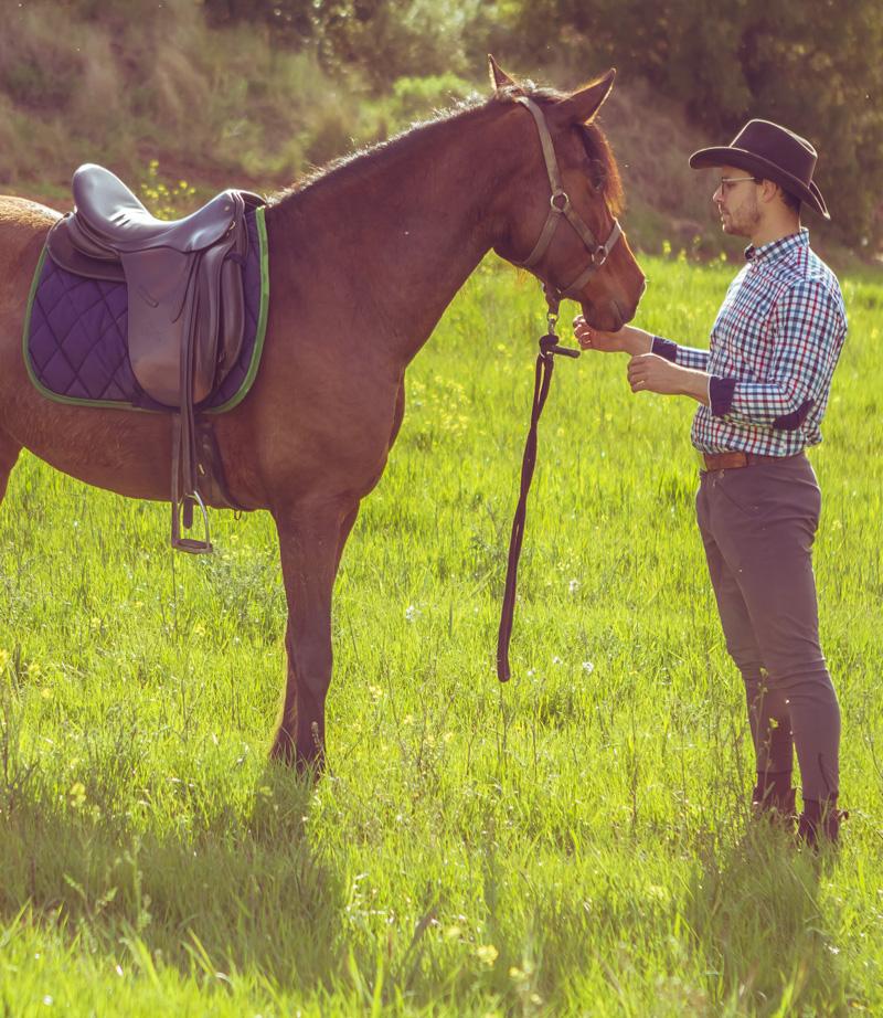Clases de Natural Horsemanship - Todas las disciplinas son susceptibles de poder ser entrenadas desde