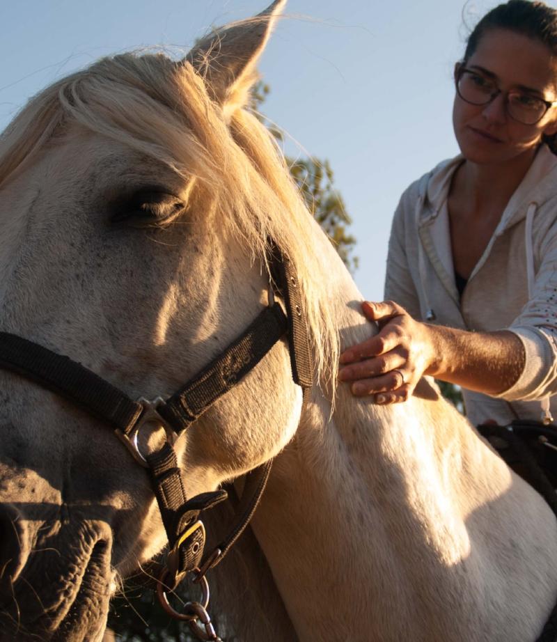 Adopción de caballos - Durante la vida de un caballo suceden muchas cosas y algunas tramas de la historia son tristes. Es por ello que te animamos a darle un feliz desenlace a un caballo que realmente lo necesite.Si te has aficionado al mundo equino o horsemanship, te ayudamos a rescatar un caballo deseoso de tu cariño y comprensión.Os ayudaremos a ambos a comprenderos, respetaros y adaptaros el uno al otro.