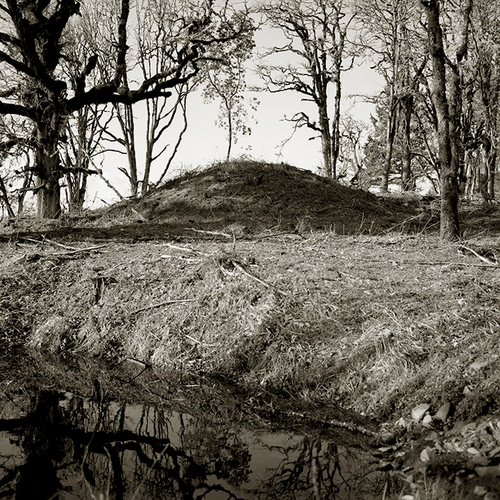 AOR1.mound.jpg