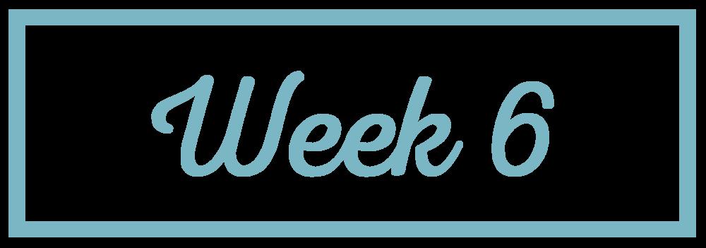 Rachel Reaches_Week 6.png