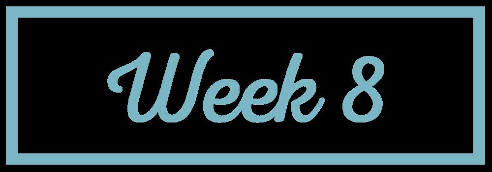 Rachel Reaches_Week 8.png
