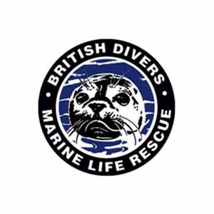 Partner-logo-BDMLR.jpeg