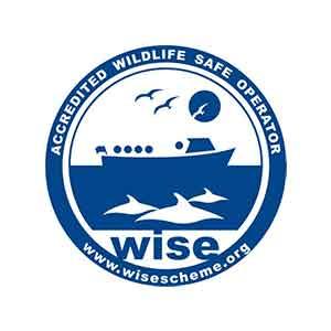 Partner-Logos-WISE.jpg