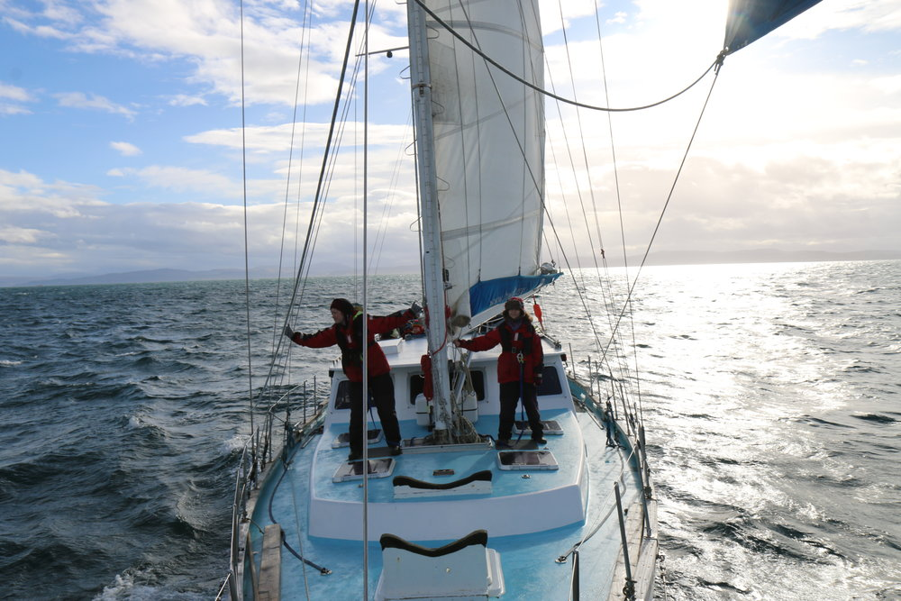 Young carers sailing the Hebridean seas in search of whales and dolphins