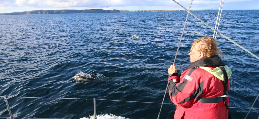 A common dolphin breaks the surface while one of our team catches the moment