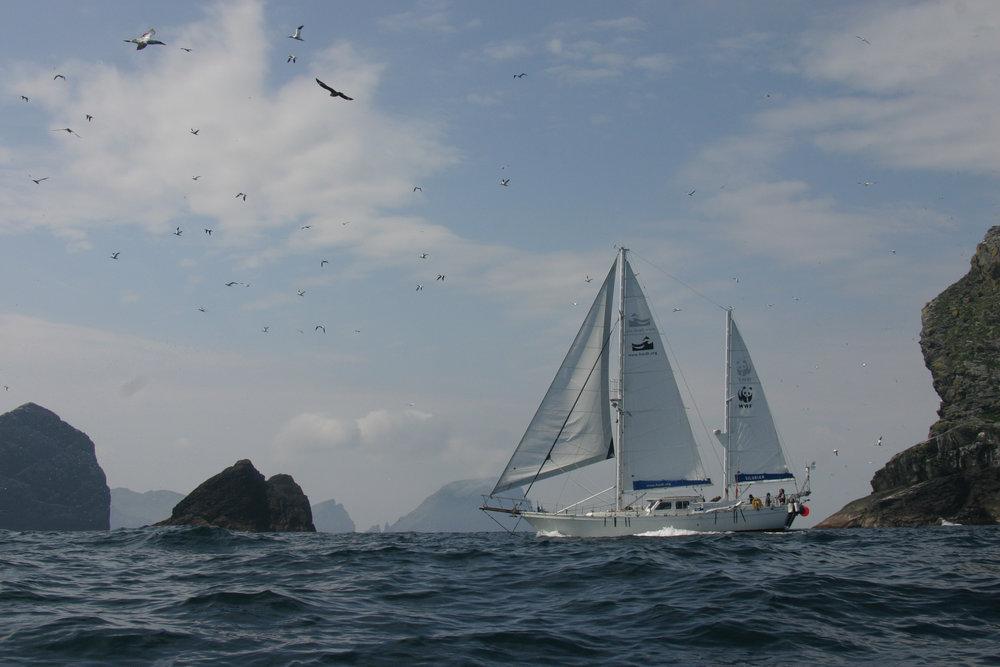 Silurian surveying Hebridean Seas
