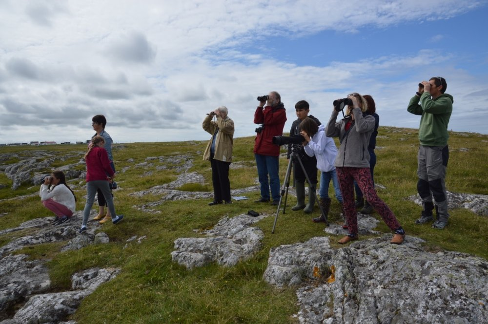 A joint headland watch on Tiree led by HWDT and the Ranger Service.