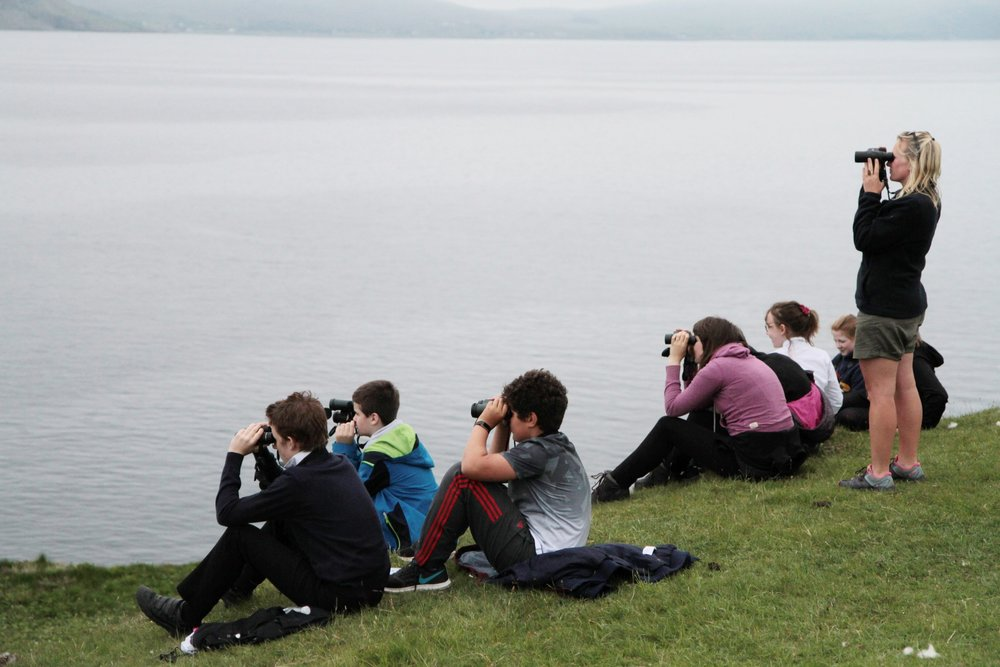 S1 pupils scanning the seas, with Glengorm Wildlife Ranger, Kerry, for their John Muir Award.