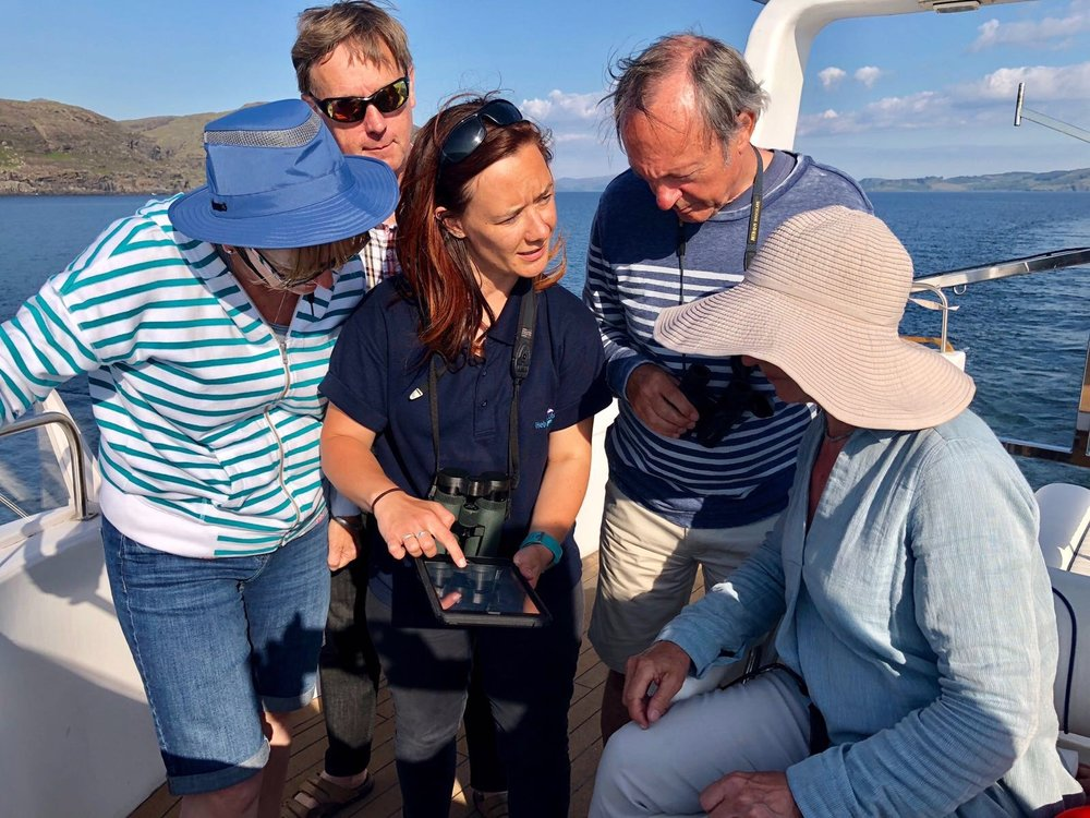 Hebrides Cruises Wildlife Guide, Lynsey Bland showing guests their sightings on Whale Track. Copyright: James Fairbairns, Hebrides Cruises.