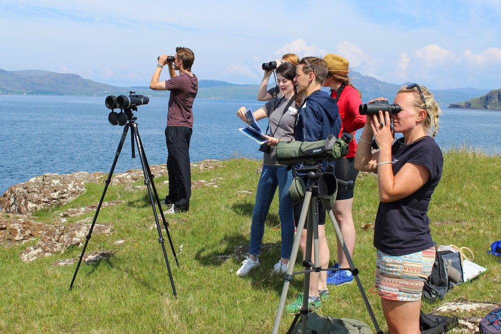Glengorm Wildlife Project and HWDT conducting a headland watch for cetaceans