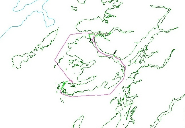 Track lines for Winter Survey 2