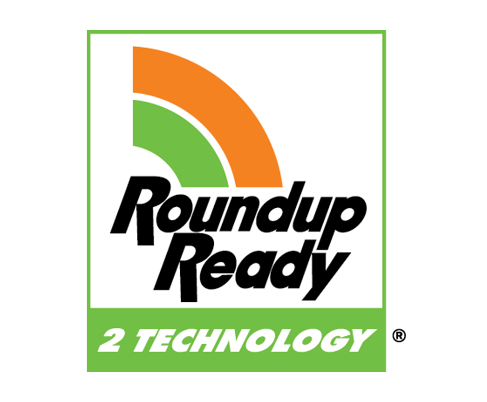 Roundup ready2.png