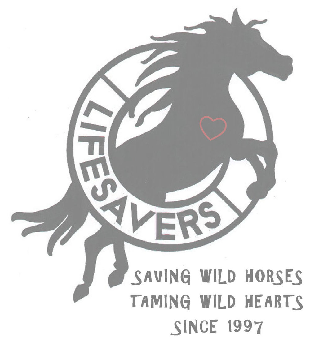 Lifesavers Wild Horse Rescue