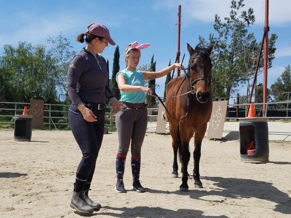 Marce Olson (a Masterson Method Practitioner) is showing Kaylee (a riding instructor at  Special Spirit Therapeutic Riding Center ) some therapeutic techniques for walking a horse who is holding pain and tension in his neck . *Kaylee's cute bunny ears were for Easter weekend.