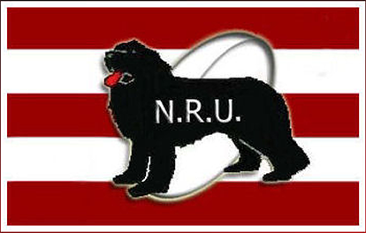 NLRULOGO_05-cropped small.png