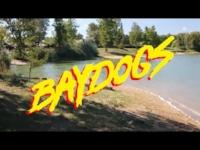 baydogs.jpg