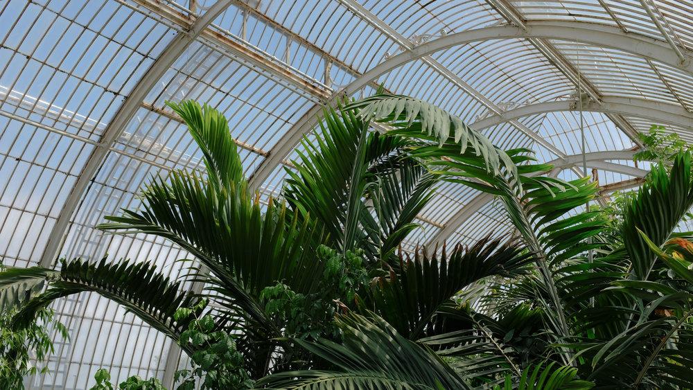 Kew_Gardens_13.jpg