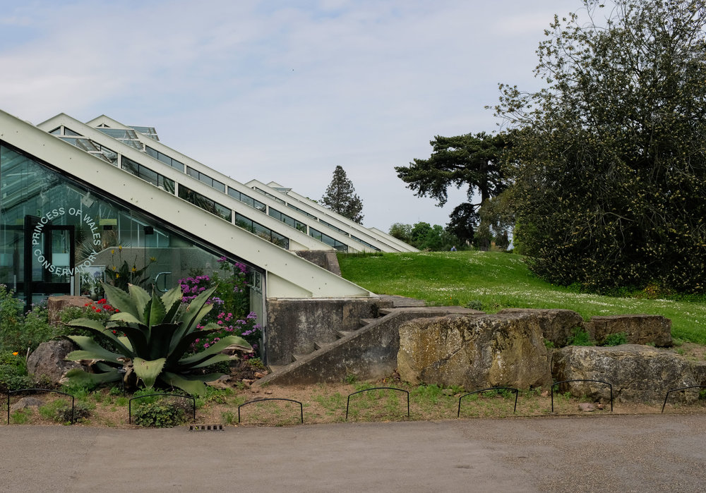 My favorite!!  Princess of Wales Conservatory with 10 different climate zones. Take me to another world Princess Di!