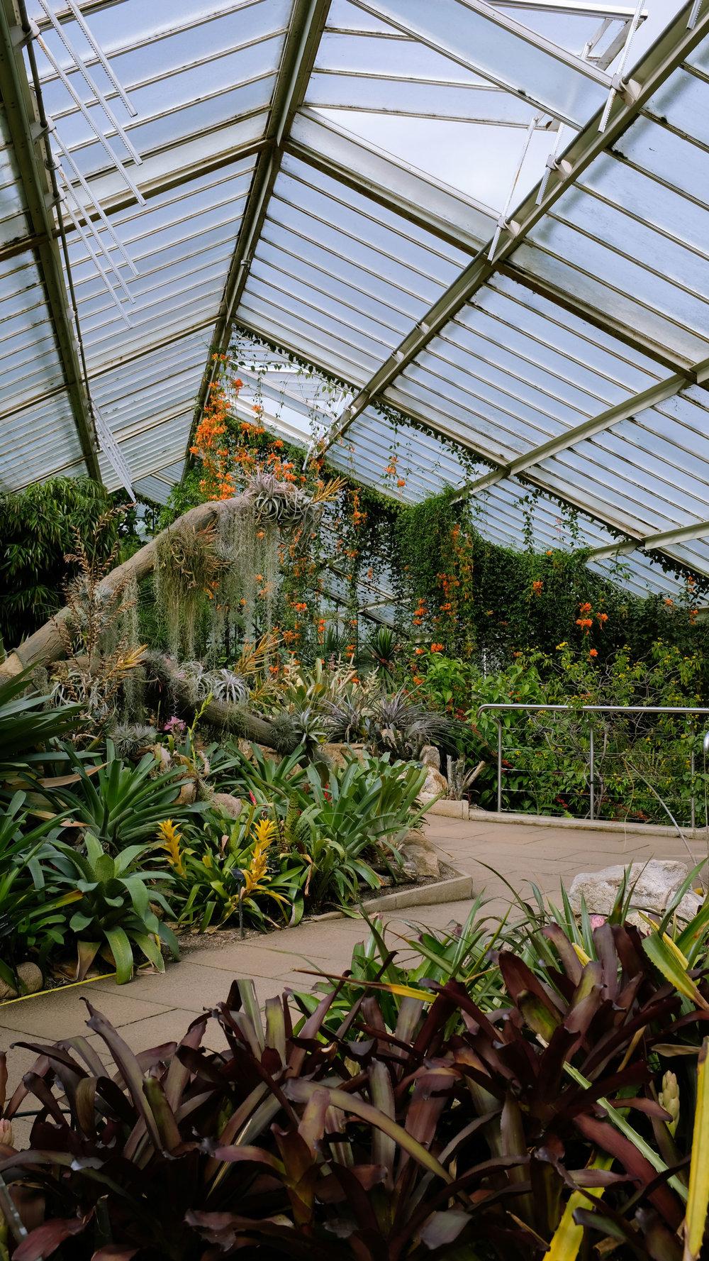 Kew_Gardens_25.jpg