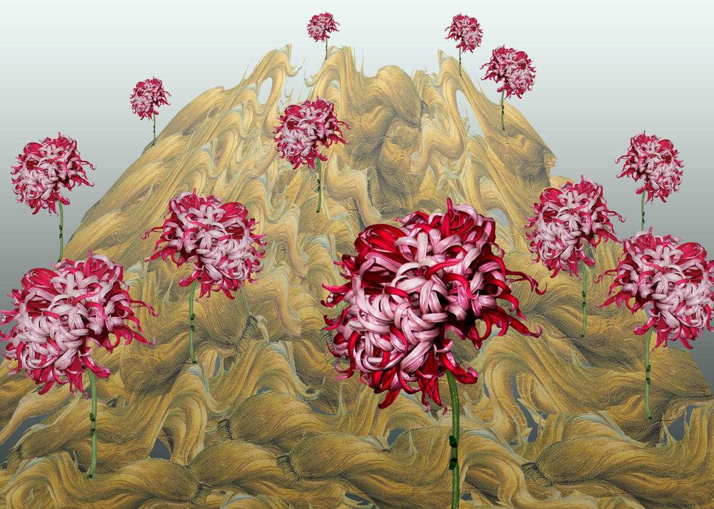 Chrysanthemum1500.jpg