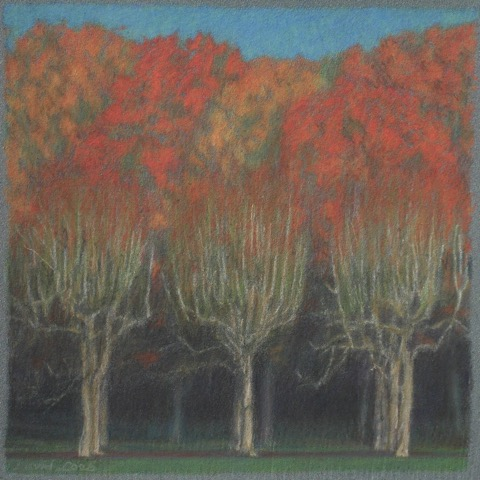 CHESTNUT TREES (PASTEL)