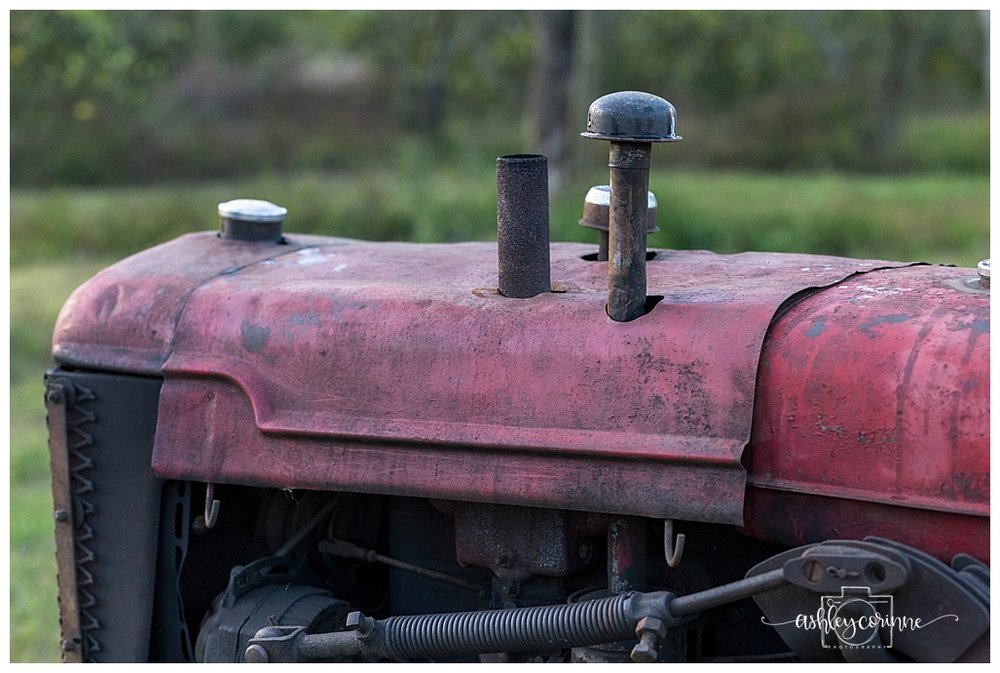 Robert's Tractor - A Florida Cane Grinding - Ashley Corinne Photography
