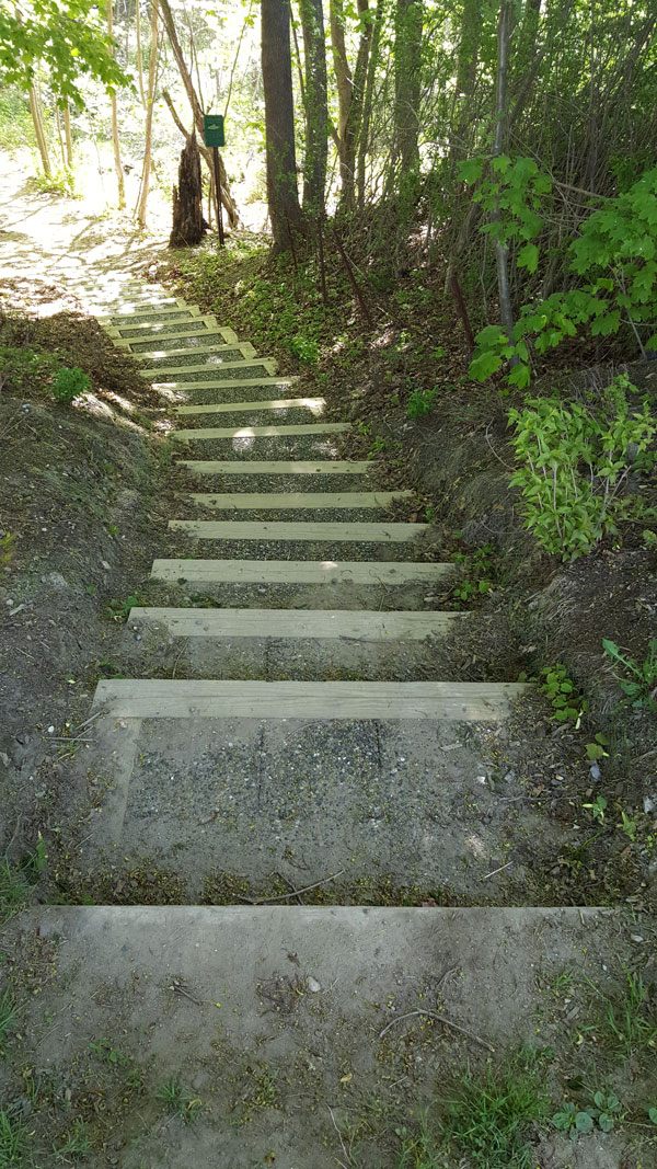Steps from Mt Vernon St