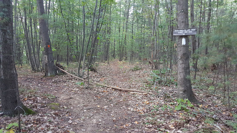 Where the Clarks Pond Trail and Red Brook Trail meet