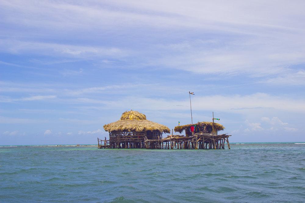 Pelican Bar -
